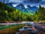 beautiful forest stream hdr