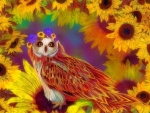 ~Sunflower of Owl~