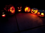 Halloween Carvings