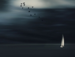 birds flying over sailboat