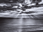 sunbeams over an ocean in monochrome
