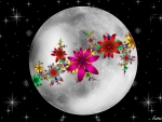 Moon Flower Art