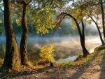 mist on a river in morning light