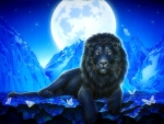 Moonlit Lion