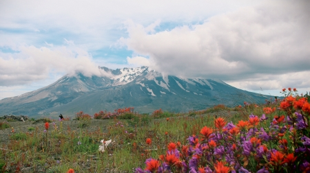 Mt. St. Helens, Washington - clouds, flowers, volcano, landscape, summer
