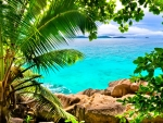 Tropical beach.The Seychelles