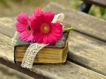 OLD BOOK WITH GERBERA FLOWERS