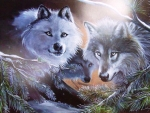 Eyes Of The Forest Wolves