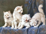 Four White Persian Cats