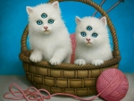 Three eyes kittens