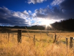 sunbeams over pastures in new zealand