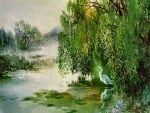 Light in the Willows - Egret F