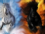 fire and ice horses