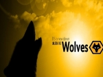 New Era Wolves FC
