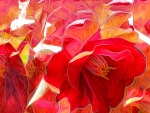 Abstract Flower Petals f