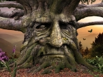 "'A spirit tree????"".....'lol'"