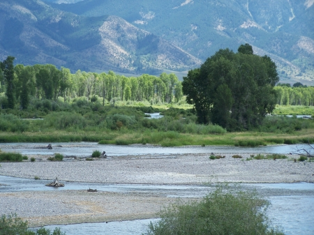 Snake River, Swan Valley, Idaho - Fishing, Mountains, Rivers, Scenic