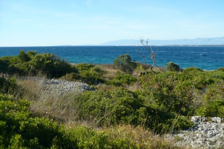 sea side - blue, coast, trees, mountains, grass, bush, water, shore, stones, landscape, sea side, rocks, tree, sea, island, beautiful, green, beach, ocean