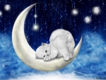 Little Cat on The Moon
