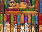 Dog Book Shelf