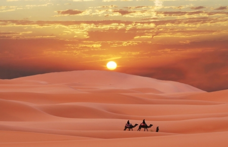 Burning desert - hot, deser, dune, camel, sand