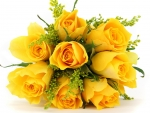 Delicate yellow rose