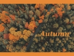 Autumn - An Aerial View
