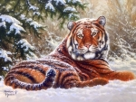 ..Tiger in Snowy..