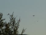 Bird in Tree, Helicopter in Smoke Filled Sky, Tie Canyon Fire