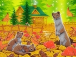 Autumn Home of Stoats