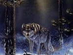 'Lone wolf'......