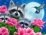 Magnolia Coons