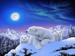 Dreams of polar bears