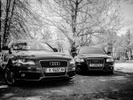 Audi A4 and A6