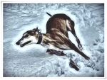Greyhound, Abstract
