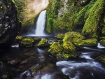 Green Moss Waterfall