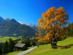 Early autumn in the Alps