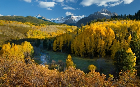 Autumn in Colorado Forest - colors, leaves, mountains, landscape, river, trees