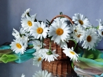 Basket of  flowers