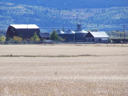 Farm facing Pole Canyon, Victor, Idaho - Autumn, Mountains, Fields, Farms, Fall