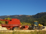 Cat Challenger MT755 with Pull Type Combine, Darby Canyon, Teton Valley, Idaho
