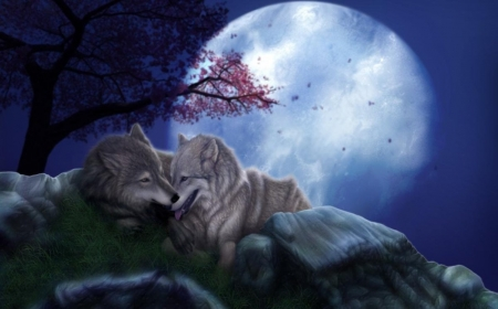 •ღ✿ღ• - blue, animal, wolf, moon