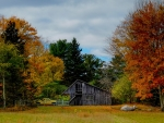 Autumn in Kent County, Michigan