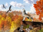 Autumn Wolf Song