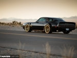 1982 Pontiac Firebird Trans-Am