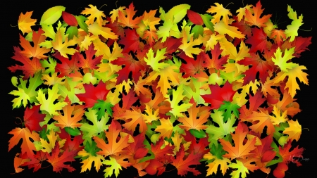Color of Many Leaves - Firefox Persona theme, colorful, leaves, autumn, bright colors, fall