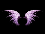 Purple Angel Wings