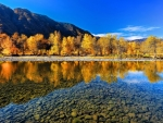 Golden Reflection in the Clear Lake