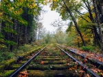 Abandoned Rail road