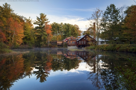 Log Cabin - home, cabon, house, housing, log, architecture, woods, lake, wood, water, modern, trees